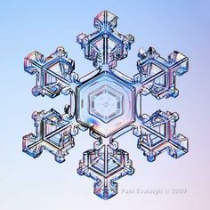 "REAL Canadian Snow!    In 2006 I took my first snowflake images and was fascinated with the results. Inspired by Wilson Bentley's pioneering efforts and after reading Edward R, Lachapelle's book ""Field Guide to Snow Crystals"", I decided to experiment more."