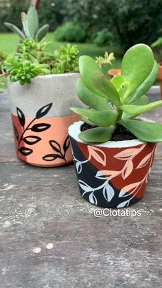 Succulents In Containers, Container Plants, Container Gardening, Concrete Planters, Garden Planters, Cactus Pot, Painted Pots, Diy Home Crafts, Diy Videos