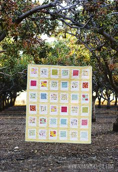 Charm pack quilt: Polaroid Quilt would be cute with some autographed pics Charm Pack Quilt Patterns, Charm Pack Quilts, Charm Quilt, Quilt Patterns Free, Quilting Tutorials, Quilting Projects, Quilting Designs, Quilt Design, Disney Quilt