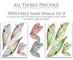 Insect Wings, Photoshop Overlays, Fairy Wings, Photographic Studio, Cosplay, Collage Sheet, Faeries, Clipart, Art Dolls