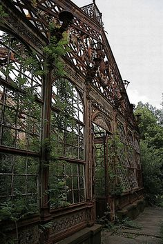 Wow. Giardino d'inverno - abandoned greenhouse in Italy. The house is nothing but rubble now.