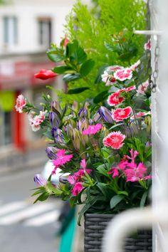 fleur en ville fleurirparis on pinterest. Black Bedroom Furniture Sets. Home Design Ideas