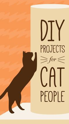 14 Purr-Fect DIY Projects for Cat People - 14 Purr-Fect DIY Projects for Cat People With three cats, these DIY projects will come in handy for sure! I Love Cats, Crazy Cats, Cute Cats, Animal Projects, Diy Projects, Diy Cat Bed, Diy Dog, Gato Gif, Gatos Cats