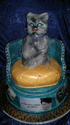 cake cats