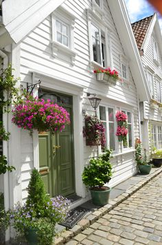A neighborly exterior of cute cottage homes. Cute Cottage, Beach Cottage Style, Beach Cottage Exterior, Cottage Style Decor, Beach Cottage Decor, Cottage Design, Nantucket Style Homes, Cottage Door, Seaside Style