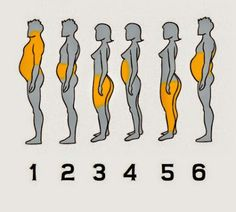 Regardez quelle partie de votre corps est la plus grasse: vos saurez quel genre de vie vous avez et comment faire avec