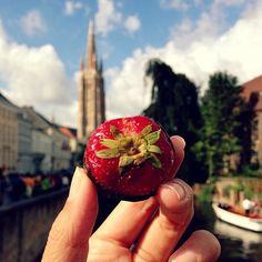 Godiva Strawberry Chocolate in #brugge, #belgium - Photo GirlEatWorld l #food #godiva #strawberry #travel #travelphotography #mouthwatering #girleatworld
