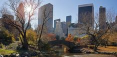 https://flic.kr/p/bqBsyq   Fall in Central Park, Manhattan, New York City.   © 2012 by Pedro Lastra This image is copyrighted material as indicated! Unauthorized use or reproduction for any reason is prohibited