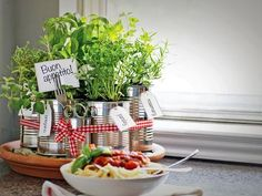 Grow Your Own Kitchen Countertop Herb Garden : Rooms : Home & Garden Television