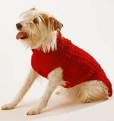 Miss Julia's Vintage Knit & Crochet Patterns: Free Patterns - 20+ Dog Sweater Coats to Knit & Crochet