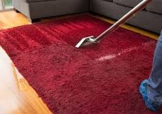 Bald patches on your carpet can make it dull. The reason behind this can be stains or heavy traffic or allergens. But sometimes carpet beetle, usually hide inside your floor covering. The small organisms can easily eat or digest the carpet fibers. Steam Clean Carpet, How To Clean Carpet, Cleaning Solutions, Cleaning Hacks, Rug Cleaning Services, Color Test, Professional Carpet Cleaning, Flooring Store, Steam Cleaning