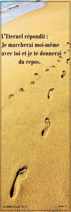 """Marcher avec DIEU, être en Sa compagnie dès le matin... Approprions-nous cette magnifique promesse - """" DIEU marche avec nous et nous donne Lui-même du repos. """"                                               *  *  * Bonne journée et belle marche à tous aujourd'hui . ♥  Claudine Michau - Google+"""