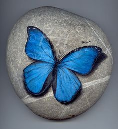 Morpho | Rock painting art by Roberto Rizzo