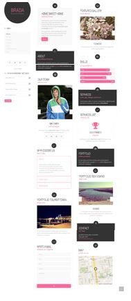Brada Innovative Wordpress Template