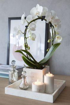 Delikat med hvit orkide og hvit marmor.