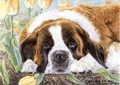 """Saint Tulips"" A Limited Edition Saint Bernard Print Pet Puppy, Pet Dogs, Dog Cat, St Bernard Dogs, San Bernardo, Dane Dog, Watercolor Images, Dog Eyes, Dog Training"