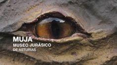 Museo Jurásico de Asturias, ubicado en #Colunga [Más info] http://www.museojurasico.com