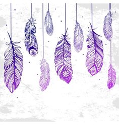 Beautiful of feathers vector 1893082 - by transia on VectorStock®