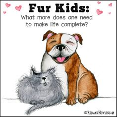 We love our fur kids 😻 Animal Lover Quotes, Dog Quotes Love, Pet Quotes, Bulldog Quotes, Snoopy Quotes, Animals And Pets, Funny Animals, Cute Animals, I Love Dogs