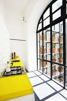 Minimalist feature colour kitchen, and vertical potted succulent garden outside.