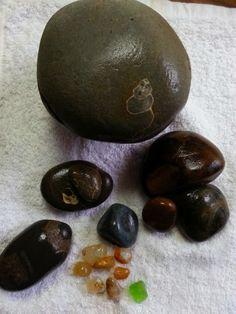 Agates of the Oregon Coast: Beach Combing Treasures found on the Oregon Coast | fossils, concretion, petrified wood, etc.