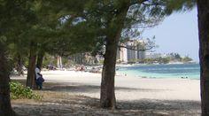 Sabia que as Bahamas têm uma história muito interessante sobre piratas? Conheça a história em www.viajarpelahistoria.com America Tumblr, America Memes, America Pride, South America, Stuff To Do, Things To Do, America Outfit, Bahamas, Wander