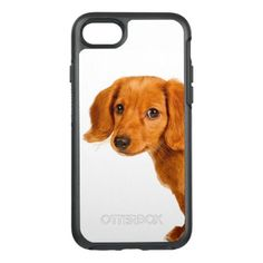 #Dachshund puppy dog OtterBox symmetry iPhone 7 case - #dachshund #puppy #dachshunds #dog #dogs #pet #pets #cute
