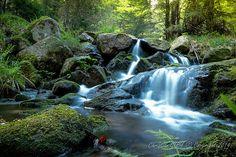 randonnée dans les Vosges