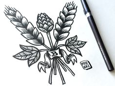 Homebrewing logo hops and barley - homebrewing Beer Brewing, Home Brewing, Wheat Tattoo, Hop Tattoo, Hops Plant, Beer Images, Craft Beer Festival, Beer Hops, Lavender Tattoo
