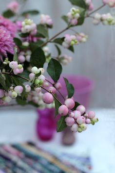 A Bunch for the Weekend-# 86-Pink Snowberries and Pink Chrysanthemums-Ingrid…