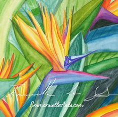 Bird Of Paradise - Flower Watercolor Art Card, 5.5 x 5.5 Square Nature Blank Notecard, Floral Watercolor Greeting Card, Wall Art  Treat yourself