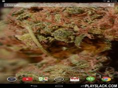 Sour Diesel Live Wallpaper  Android App - playslack.com , Let's be blunt: chances are high you love sour diesel. But there's an off chance you've never heard of this herb. Don't worry bud, let me just call in my good friend Wikipedia for this one:Sour Diesel, also known as Sour D, is a hybrid strain of cannabis. It is a cross between Mexican sativa and Chemo indica. The strain produces a fast acting, dreamy high that, due to a 90% concentration of sativa, yields excellent cerebral effects…