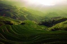 Rice terrace at Longji, the most exciting place for trekking and hiking in the Guilin area.