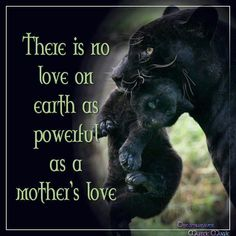 Mothers love