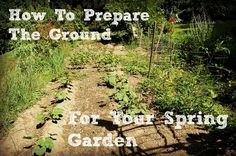 Preparing the Ground for Your Spring Garden - The Toups Address