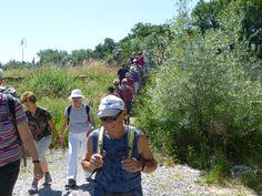 Wanderung 23. Juni: Vom Thur-Stauwehr bei Weinfelden geht es hinunter zur Wanderfortsetzung