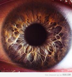 Close up of a human eye - WAY cool