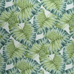 Hamilton Fabrics Costa Rica Seaspray a medium scale tropical leaf design in teal and green with off white background. White Pillows, Toss Pillows, Tropical Design, Fabulous Fabrics, Tropical Paradise, Tropical Leaves, Leaf Design, Shades Of Green, Basket Weaving