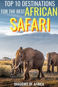 The Top 10 Destinations for an African Safari - Travel to Africa