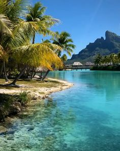 Travel Photography Discover Paradise found Paddling through the crystal clear waters of Bora Bora French Polynesia Vacation Destinations, Dream Vacations, Four Seasons Bora Bora, Paradise Found, Paradise On Earth, Beautiful Places To Travel, Romantic Travel, Photos Voyages, French Polynesia