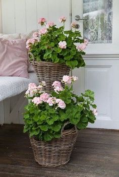 Container gardening is a fun way to add to the visual attraction of your home. You can use the terrific suggestions given here to start improving your garden or begin a new one today. Your garden is certain to bring you great satisfac Pink Garden, Garden Pots, Geraniums Garden, Red Geraniums, Garden Ideas, Container Plants, Container Gardening, Beautiful Gardens, Beautiful Flowers