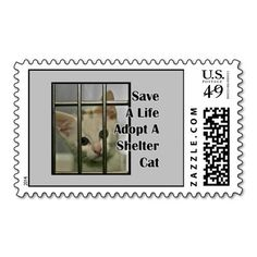 Adopt A Shelter Cat Animal Rescue Postage Stamps online after you search a lot for where to buyReview          Adopt A Shelter Cat Animal Rescue Postage Stamps Here a great deal...