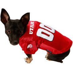 25b337073 17 Best NFL Pet Gear images