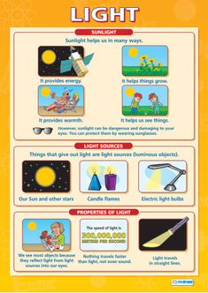 Daydream Education's Science Posters are great learning and teaching tools. The engaging and attention grabbing Science charts are guaranteed to improve understanding and help brighten school hallways and classrooms. Science Revision, Gcse Science, Primary Science, Science Topics, 5th Grade Science, Science Worksheets, Physical Science, Science Classroom, Science Lessons