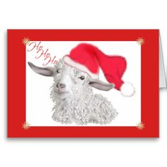 HoHoHo Angora Goat Animal Lovers delight in this cute Angora goat in her Santa Hat- HoHoHo for a whimsical Christmas greeting card. Goat Holiday Greeting Cards This is Sabrina - when she was just a few months old,, she is now 13 yrs old and still adorable.