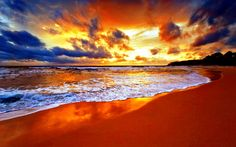 906J Photo Wall Mural-SUNSET BEACH- -NON WOVEN-Wallpaper-Palmtree Scenery Ocean