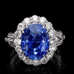 Diamond Rings, Diamond Jewelry, Gemstone Rings, Cocktail Rings, Jewelry Box, Sapphire, Diamonds, Pearls, Gemstones