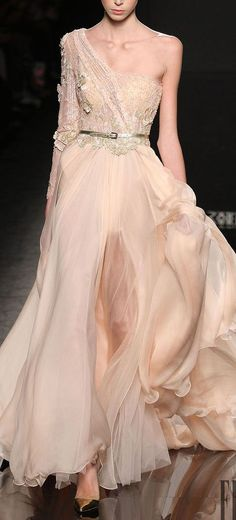 RANI ZAKHEM  COUTURE  FALL-WINTER 2014-2015