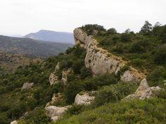 Muntanyes de Prades                                   Www.Caranordceller.Com              VINYES en alçada