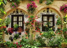 Flower house...